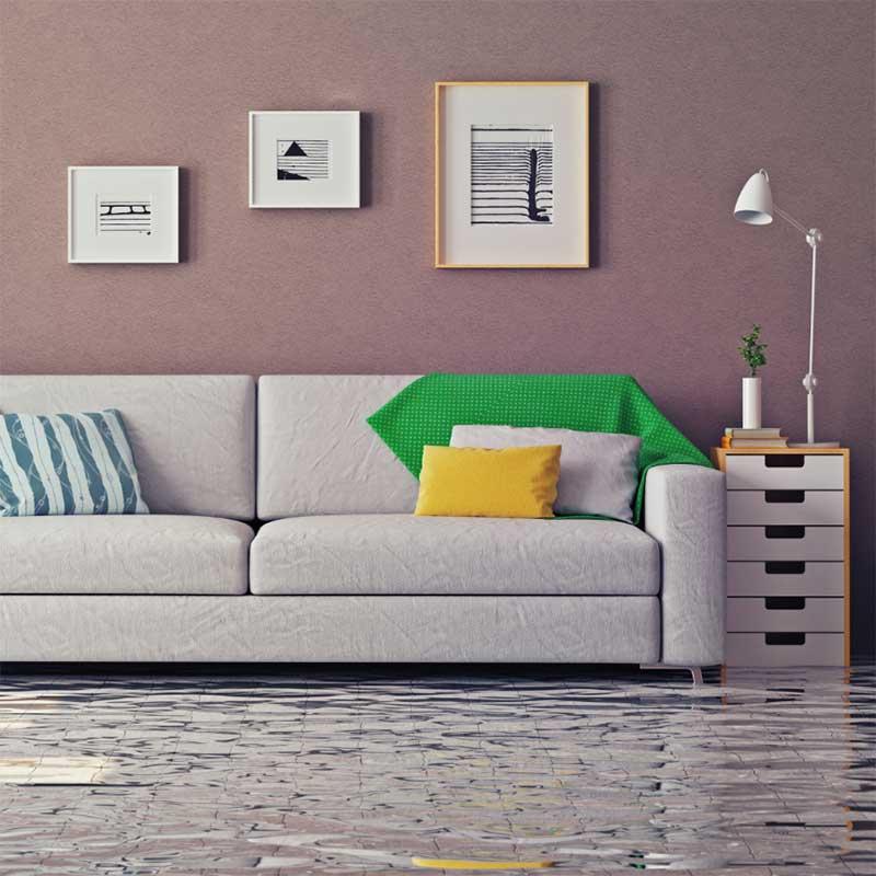 Specialty Flood Restoration
