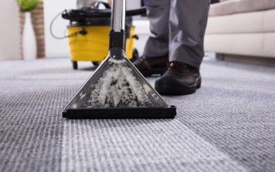 Carpet Cleaning for the Holidays