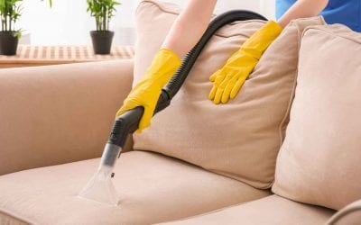 5 Undeniable Benefits of Professional Upholstery Cleaning