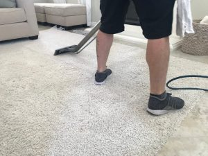 Get Stains Out of Your Carpet