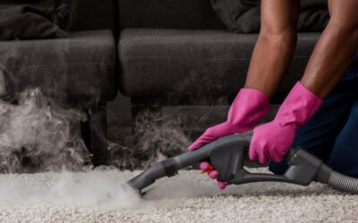 9 Carpet Cleaning Secrets Revealed by Pros (Part 2)