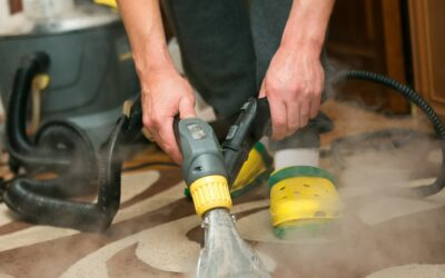 4 Important Carpet Care and Maintenance Tips
